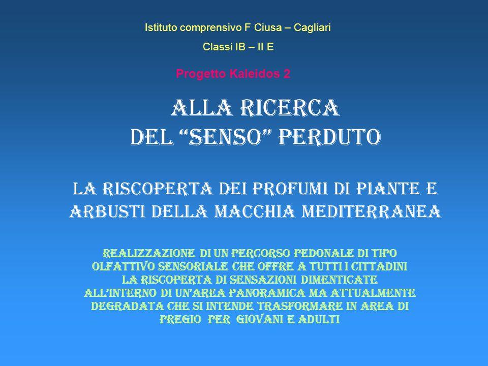 Istituto comprensivo F Ciusa – Cagliari