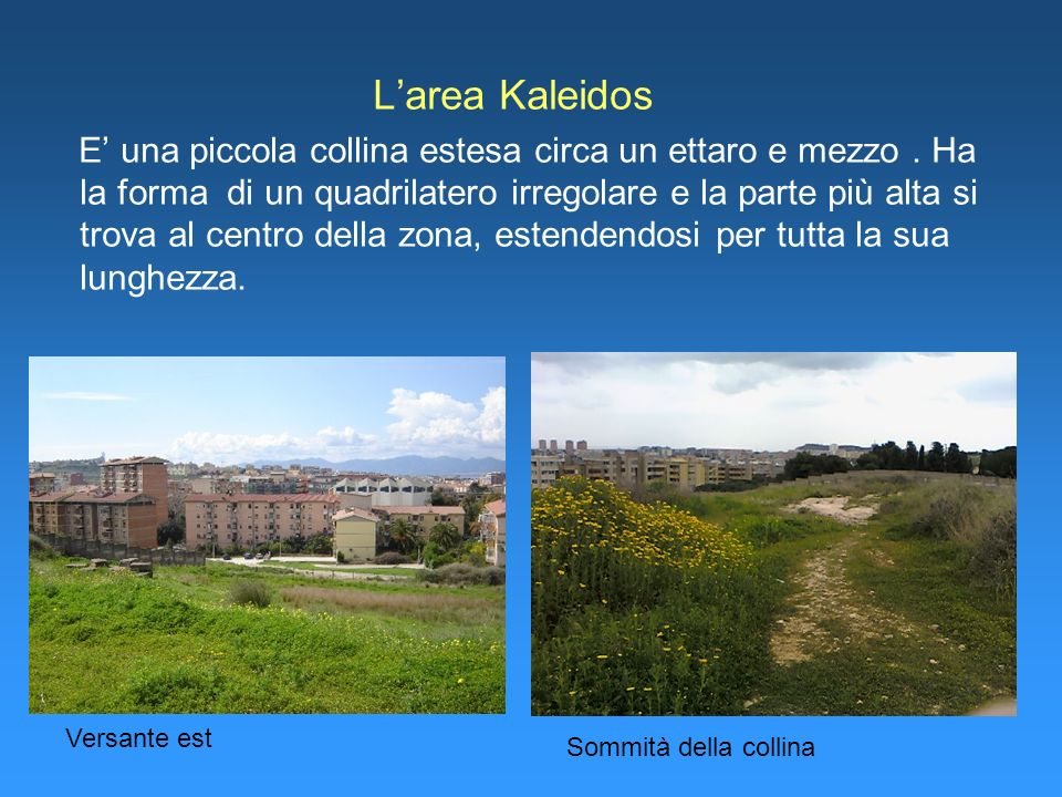 L'area Kaleidos