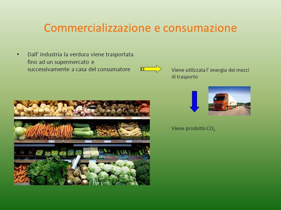Commercializzazione e consumazione