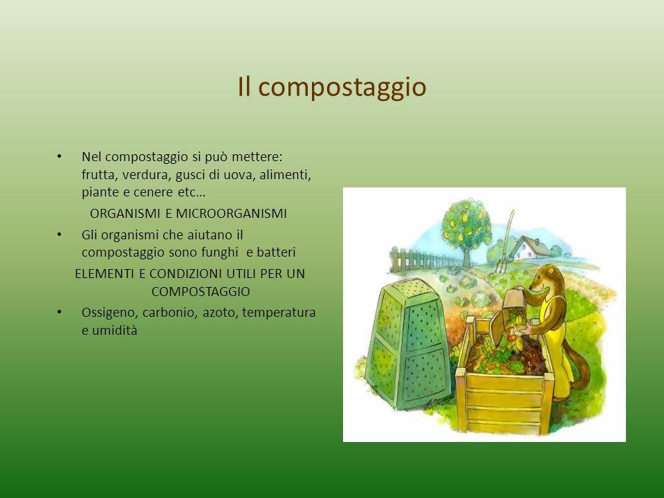 Il compostaggio Nel compostaggio si può mettere: frutta, verdura, gusci di uova, alimenti, piante e cenere etc…
