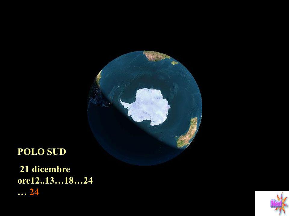 POLO SUD 21 dicembre ore12..13…18…24… 24
