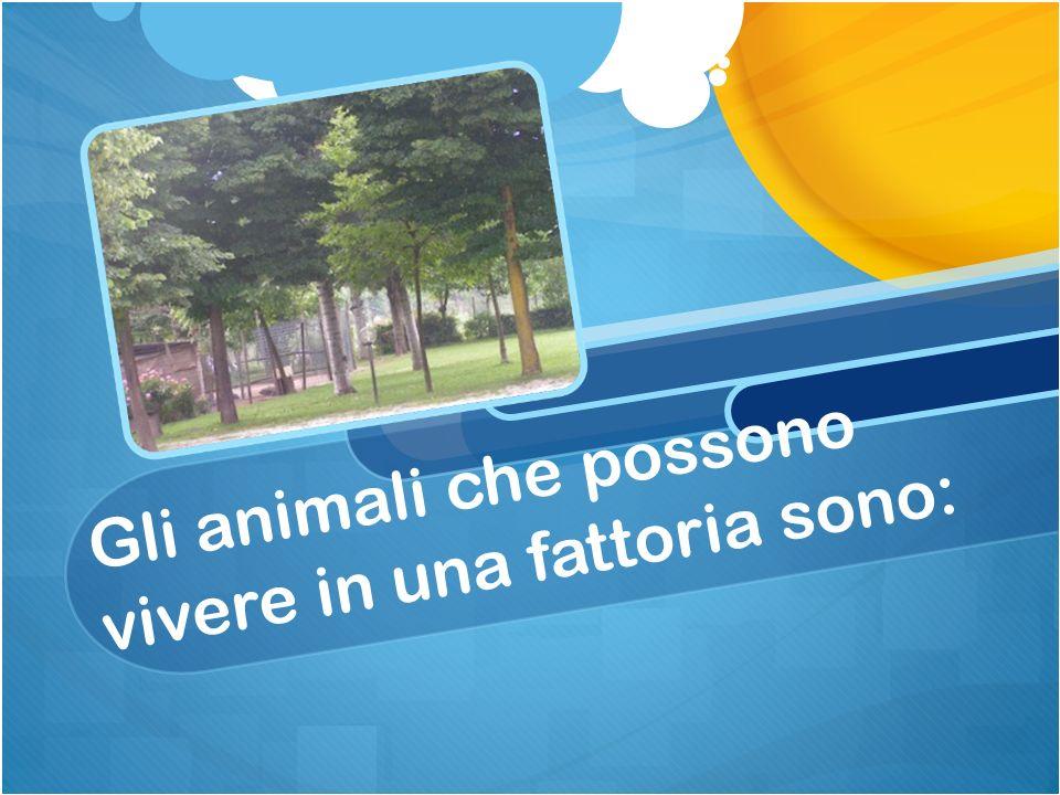 Gli animali che possono vivere in una fattoria sono: