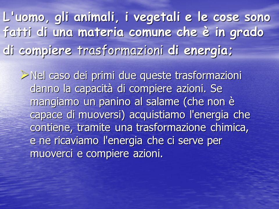 L uomo, gli animali, i vegetali e le cose sono fatti di una materia comune che è in grado di compiere trasformazioni di energia;