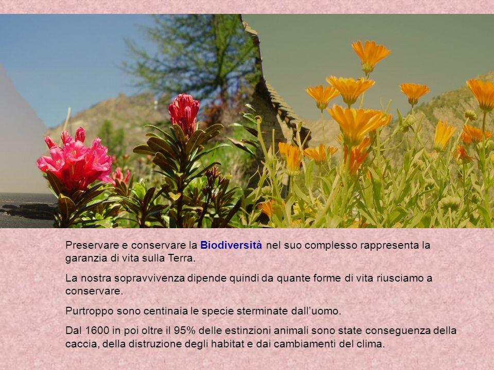 Preservare e conservare la Biodiversità nel suo complesso rappresenta la garanzia di vita sulla Terra.