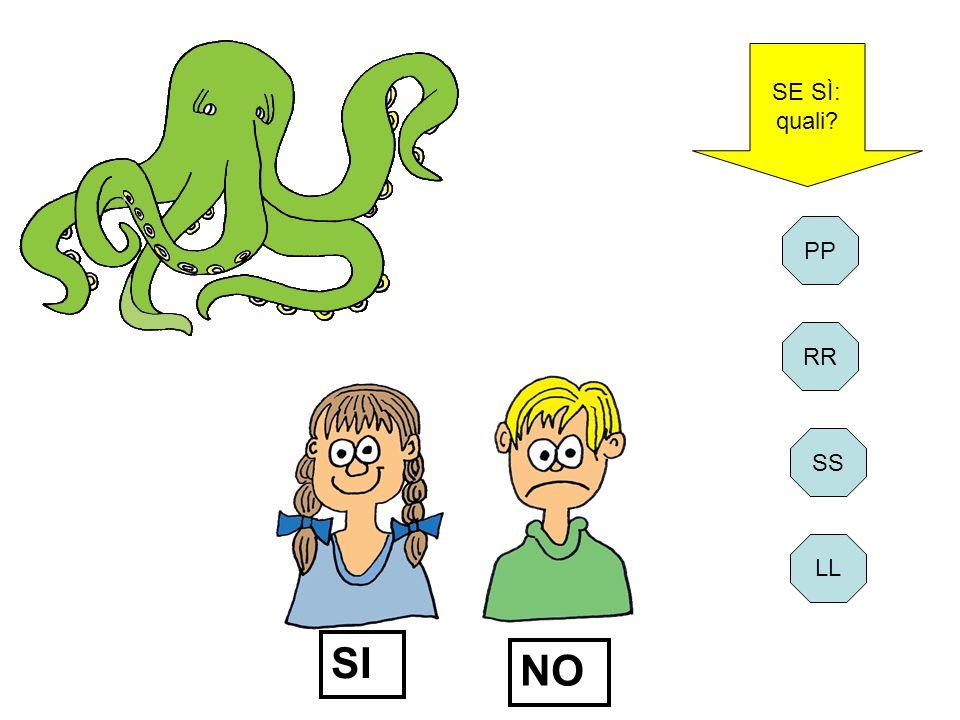 SE SÌ: quali PP RR SI NO SS LL