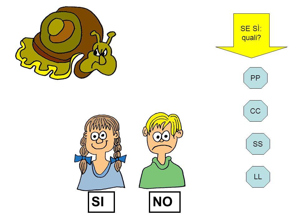 SE SÌ: quali PP CC SI NO SS LL