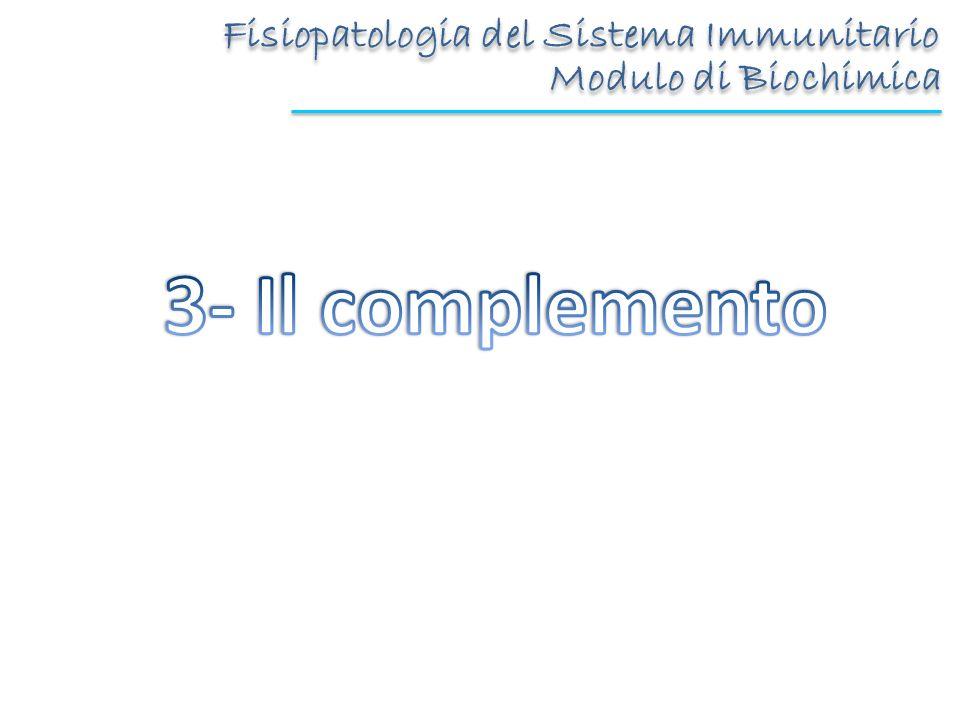3- Il complemento Fisiopatologia del Sistema Immunitario