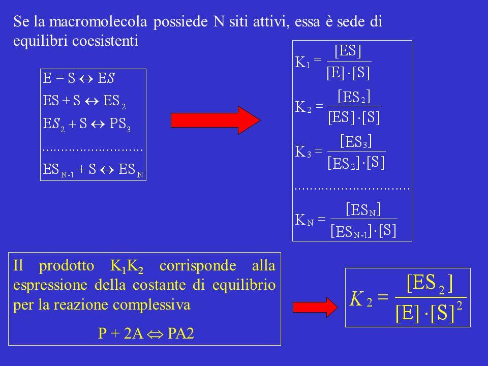 Se la macromolecola possiede N siti attivi, essa è sede di equilibri coesistenti