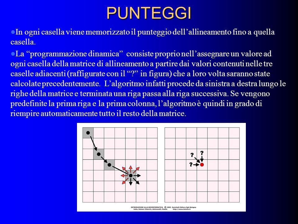 PUNTEGGI In ogni casella viene memorizzato il punteggio dell'allineamento fino a quella casella.