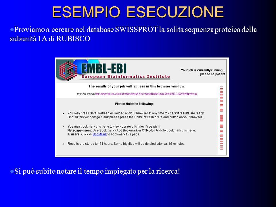 ESEMPIO ESECUZIONE Proviamo a cercare nel database SWISSPROT la solita sequenza proteica della subunità 1A di RUBISCO.