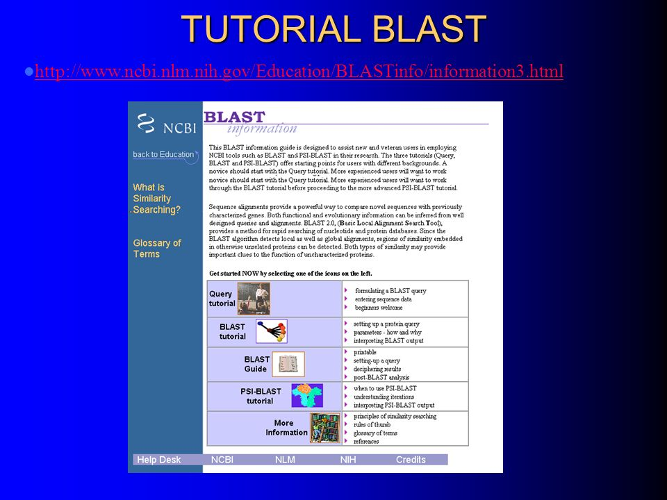 TUTORIAL BLAST http://www.ncbi.nlm.nih.gov/Education/BLASTinfo/information3.html