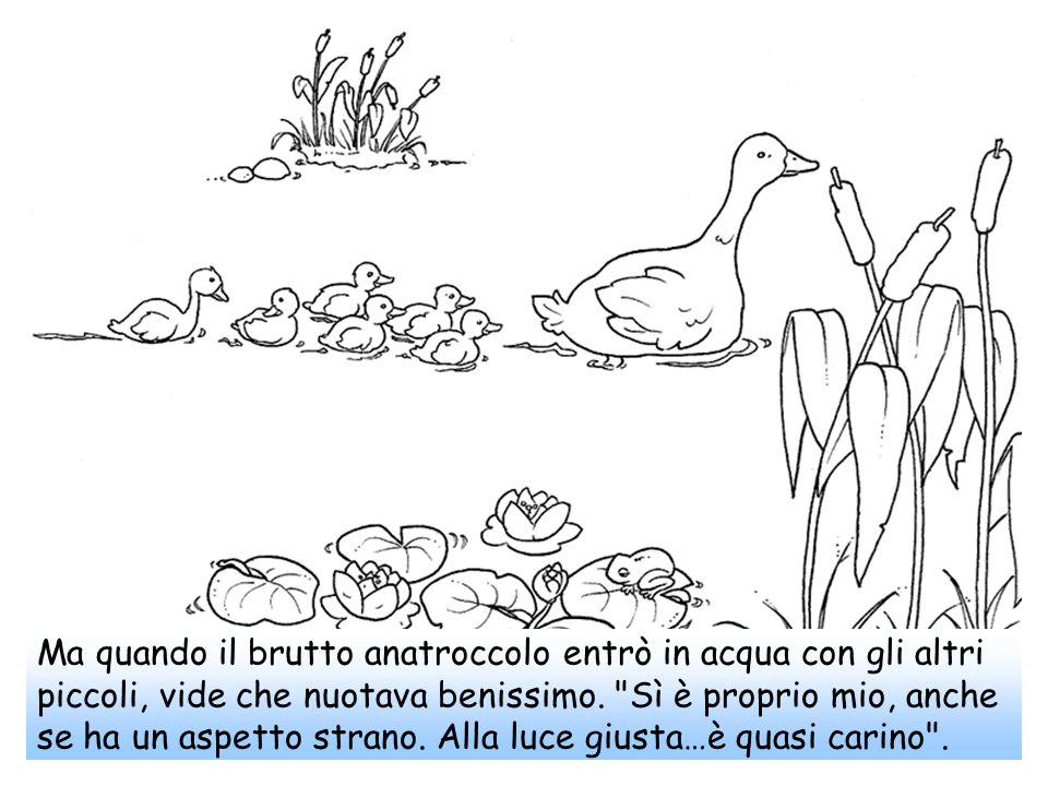 Ma quando il brutto anatroccolo entrò in acqua con gli altri piccoli, vide che nuotava benissimo.