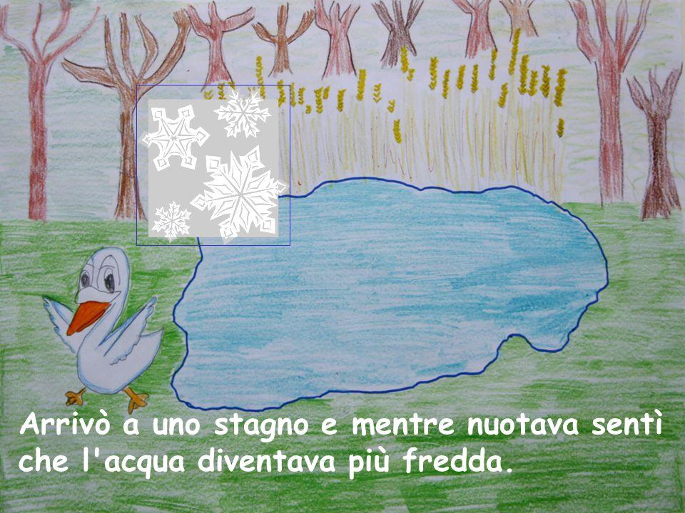 Arrivò a uno stagno e mentre nuotava sentì che l acqua diventava più fredda.