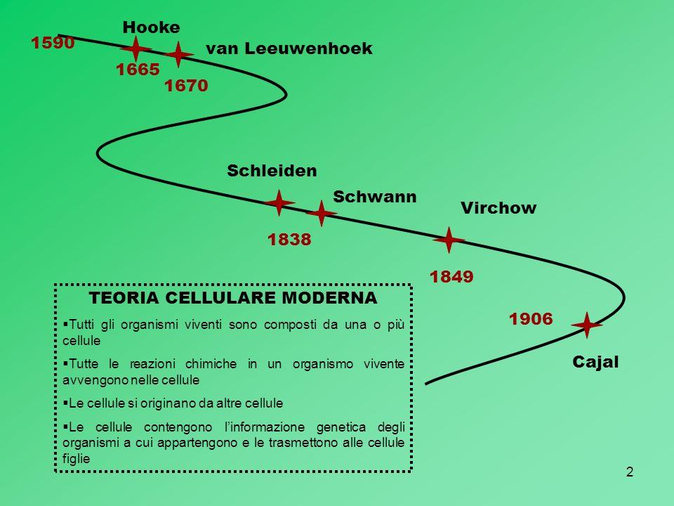 TEORIA CELLULARE MODERNA