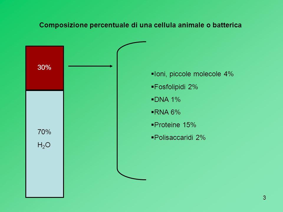 Composizione percentuale di una cellula animale o batterica