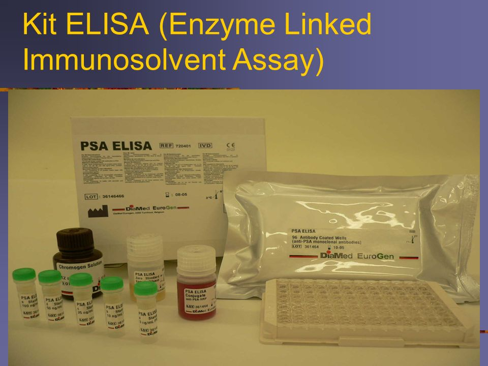 Kit ELISA (Enzyme Linked Immunosolvent Assay)