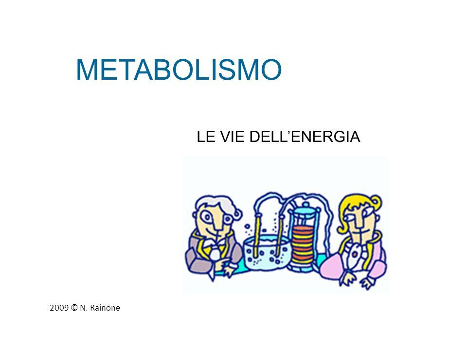 METABOLISMO LE VIE DELL'ENERGIA 2009 © N. Rainone