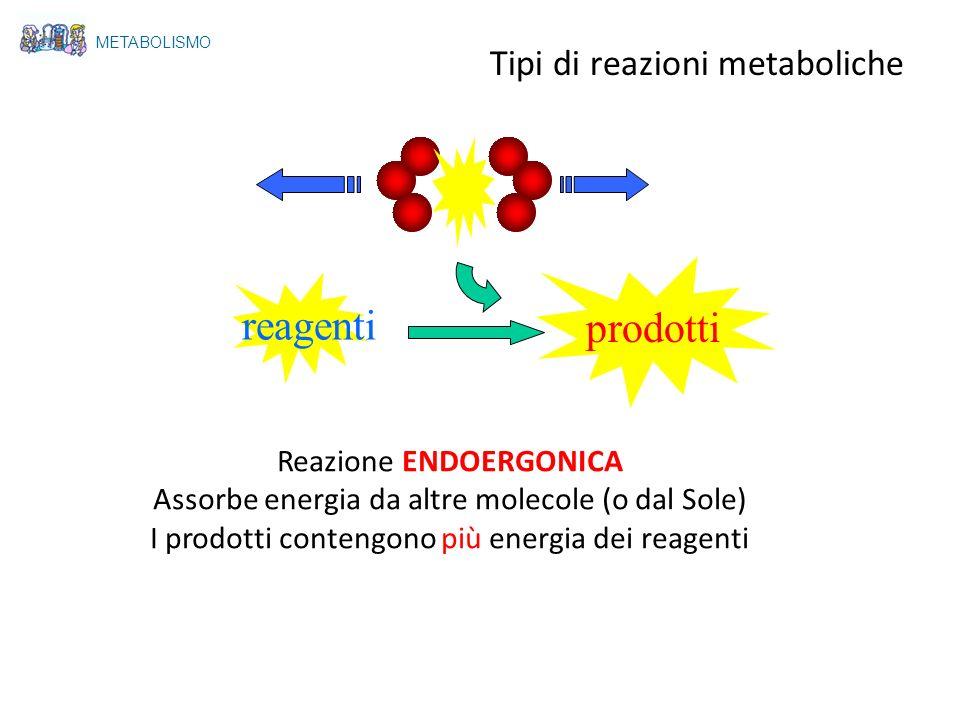 reagenti prodotti Tipi di reazioni metaboliche Reazione ENDOERGONICA