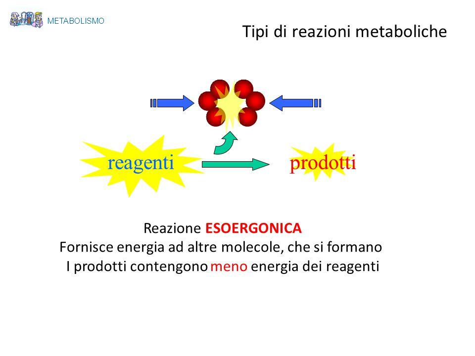 reagenti prodotti Tipi di reazioni metaboliche Reazione ESOERGONICA