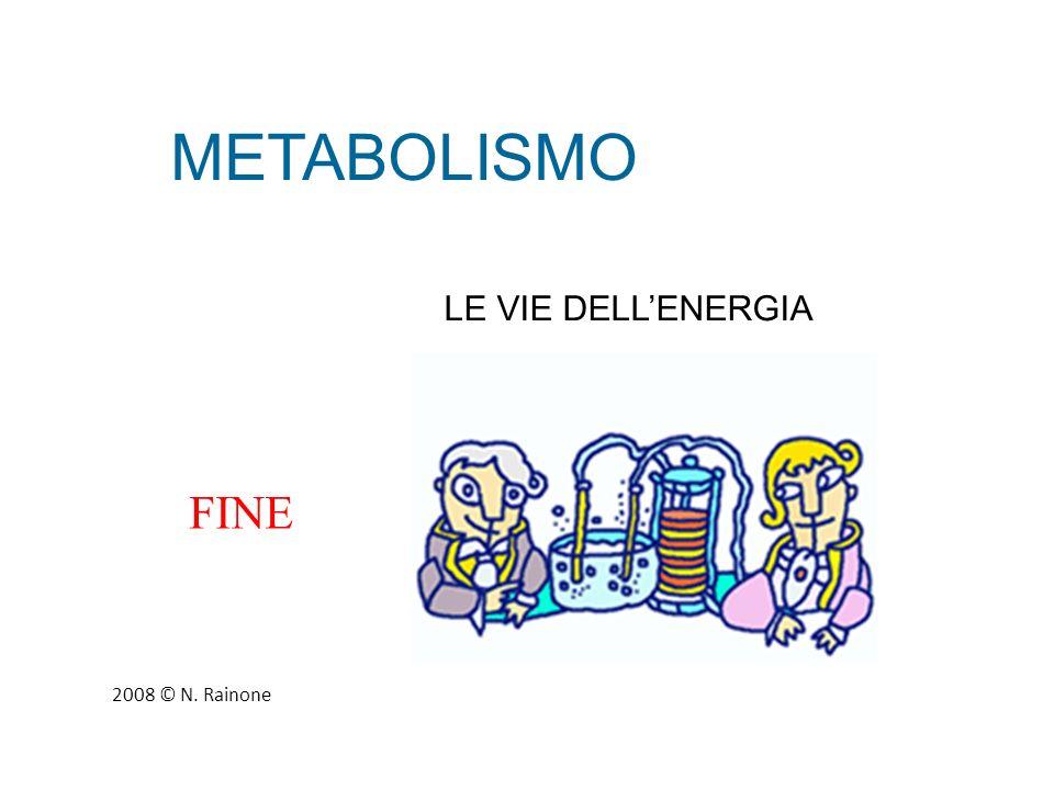 METABOLISMO LE VIE DELL'ENERGIA FINE 2008 © N. Rainone