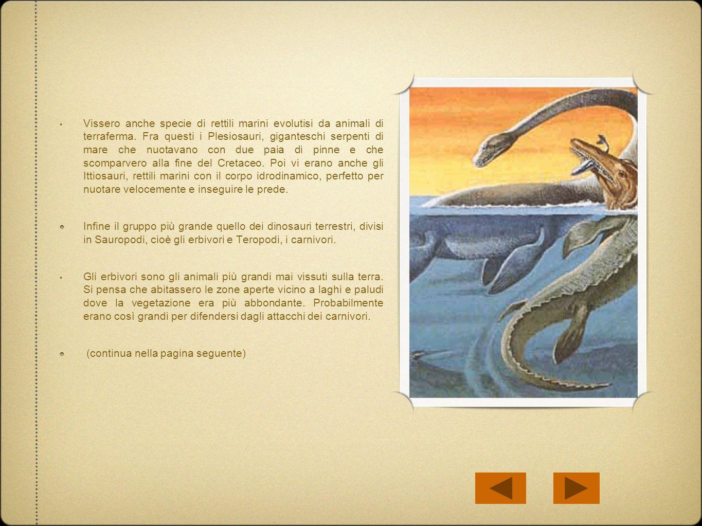 Vissero anche specie di rettili marini evolutisi da animali di terraferma. Fra questi i Plesiosauri, giganteschi serpenti di mare che nuotavano con due paia di pinne e che scomparvero alla fine del Cretaceo. Poi vi erano anche gli Ittiosauri, rettili marini con il corpo idrodinamico, perfetto per nuotare velocemente e inseguire le prede.