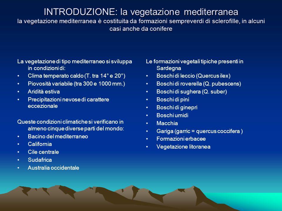 INTRODUZIONE: la vegetazione mediterranea la vegetazione mediterranea è costituita da formazioni sempreverdi di sclerofille, in alcuni casi anche da conifere