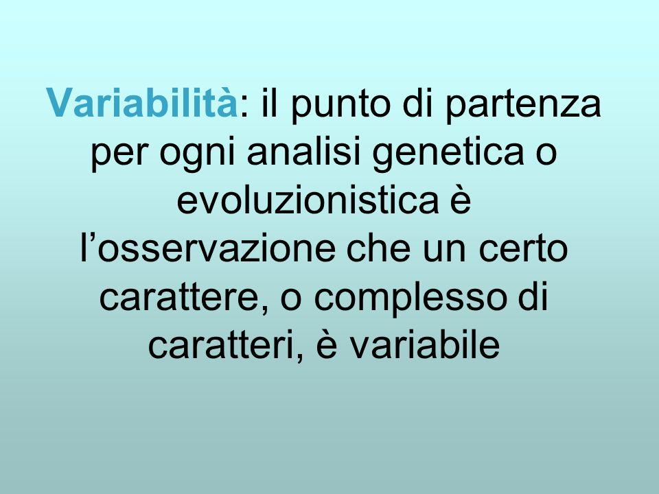 Variabilità: il punto di partenza per ogni analisi genetica o evoluzionistica è l'osservazione che un certo carattere, o complesso di caratteri, è variabile