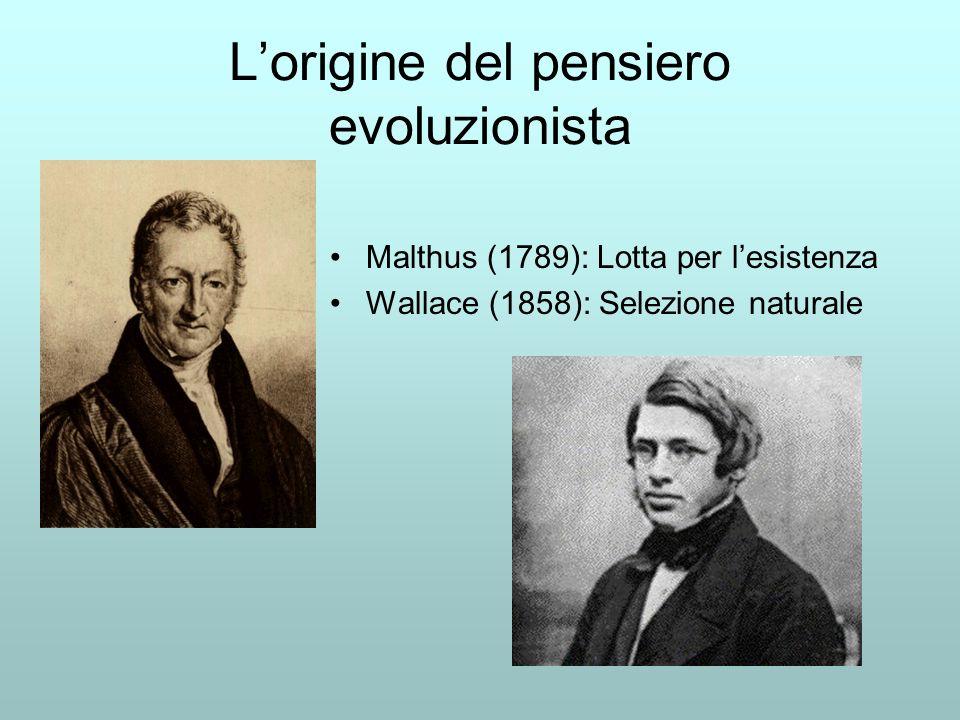 L'origine del pensiero evoluzionista