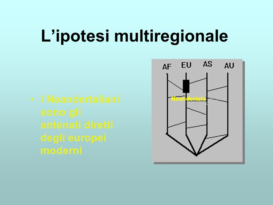 L'ipotesi multiregionale