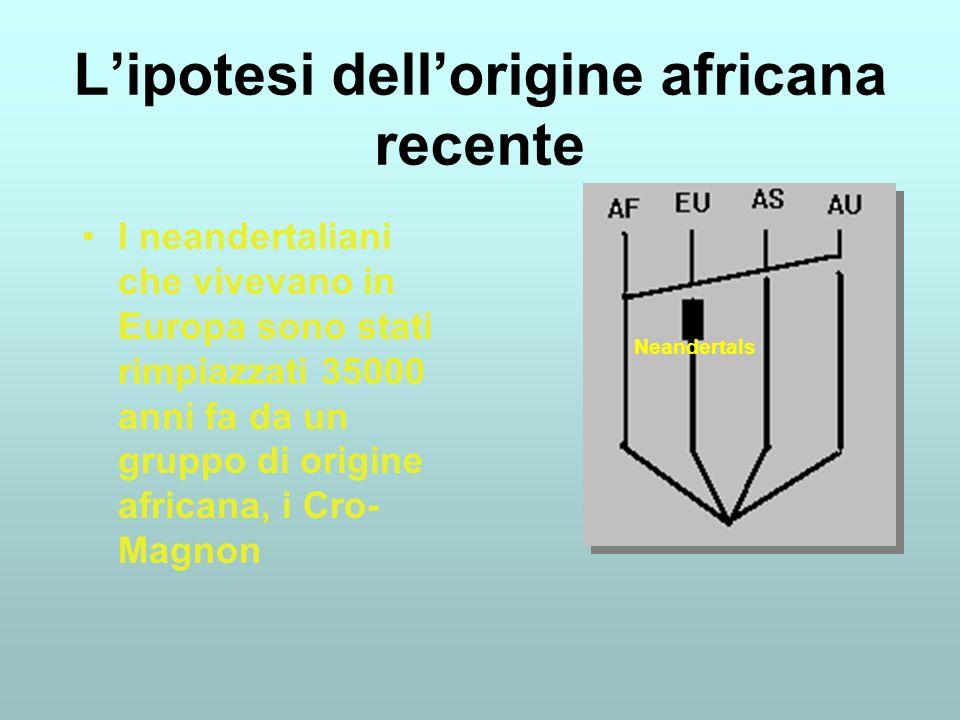 L'ipotesi dell'origine africana recente