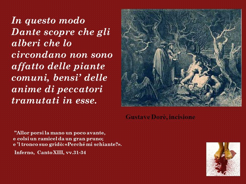 In questo modo Dante scopre che gli alberi che lo circondano non sono affatto delle piante comuni, bensi' delle anime di peccatori tramutati in esse.
