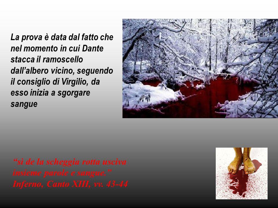 La prova è data dal fatto che nel momento in cui Dante stacca il ramoscello dall'albero vicino, seguendo il consiglio di Virgilio, da esso inizia a sgorgare sangue