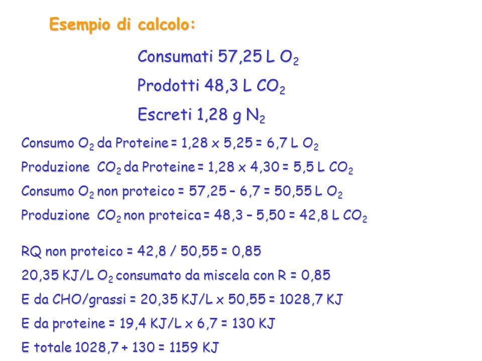 Esempio di calcolo: Consumati 57,25 L O2 Prodotti 48,3 L CO2