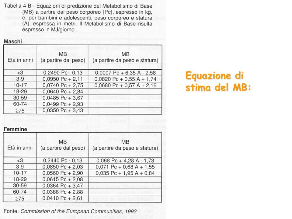 Equazione di stima del MB: