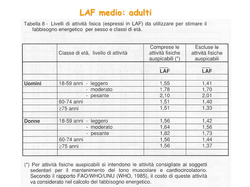 LAF medio: adulti