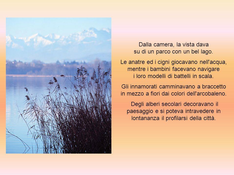 Dalla camera, la vista dava su di un parco con un bel lago.