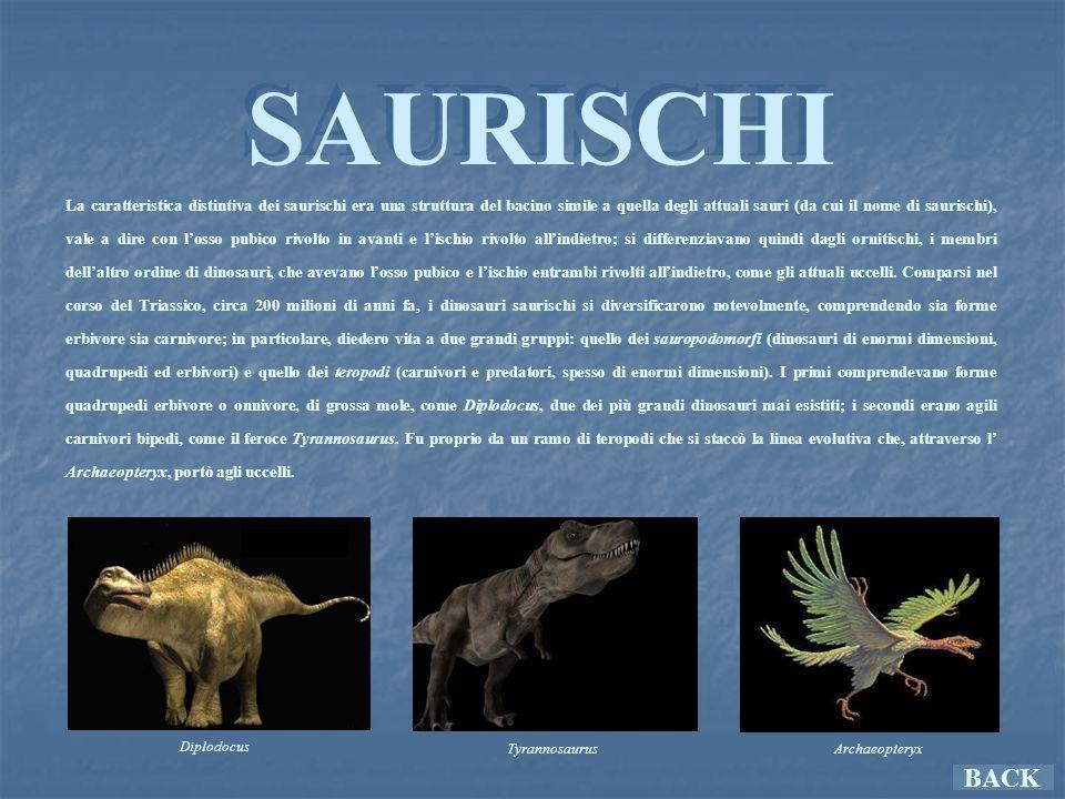 SAURISCHI