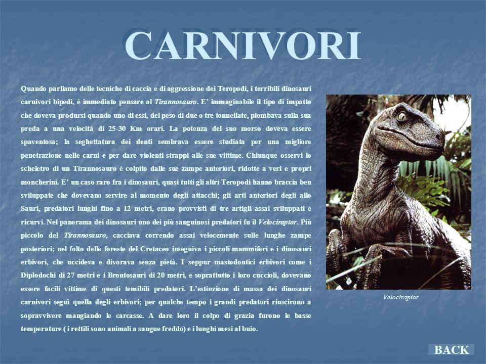 CARNIVORI