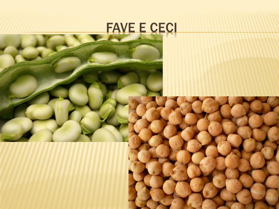 FAVE E CECI