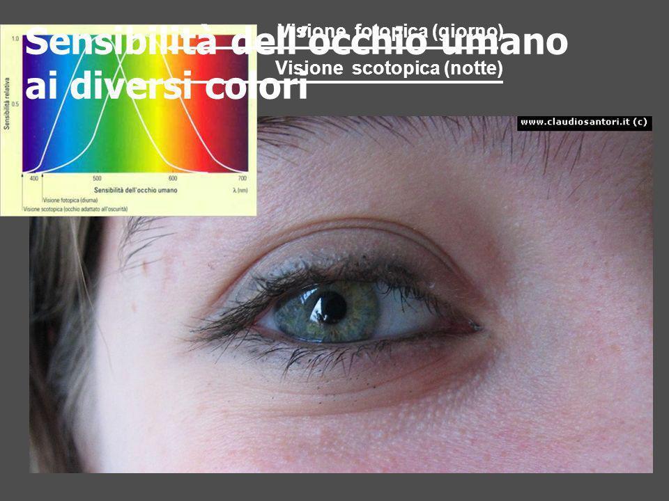 Sensibilità dell'occhio umano ai diversi colori