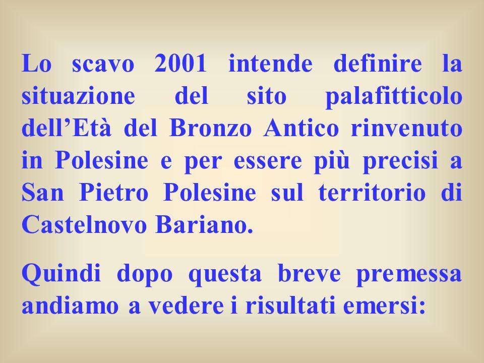 Lo scavo 2001 intende definire la situazione del sito palafitticolo dell'Età del Bronzo Antico rinvenuto in Polesine e per essere più precisi a San Pietro Polesine sul territorio di Castelnovo Bariano.