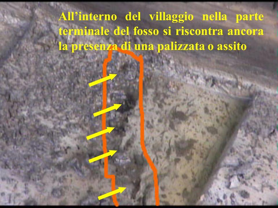 All'interno del villaggio nella parte terminale del fosso si riscontra ancora la presenza di una palizzata o assito