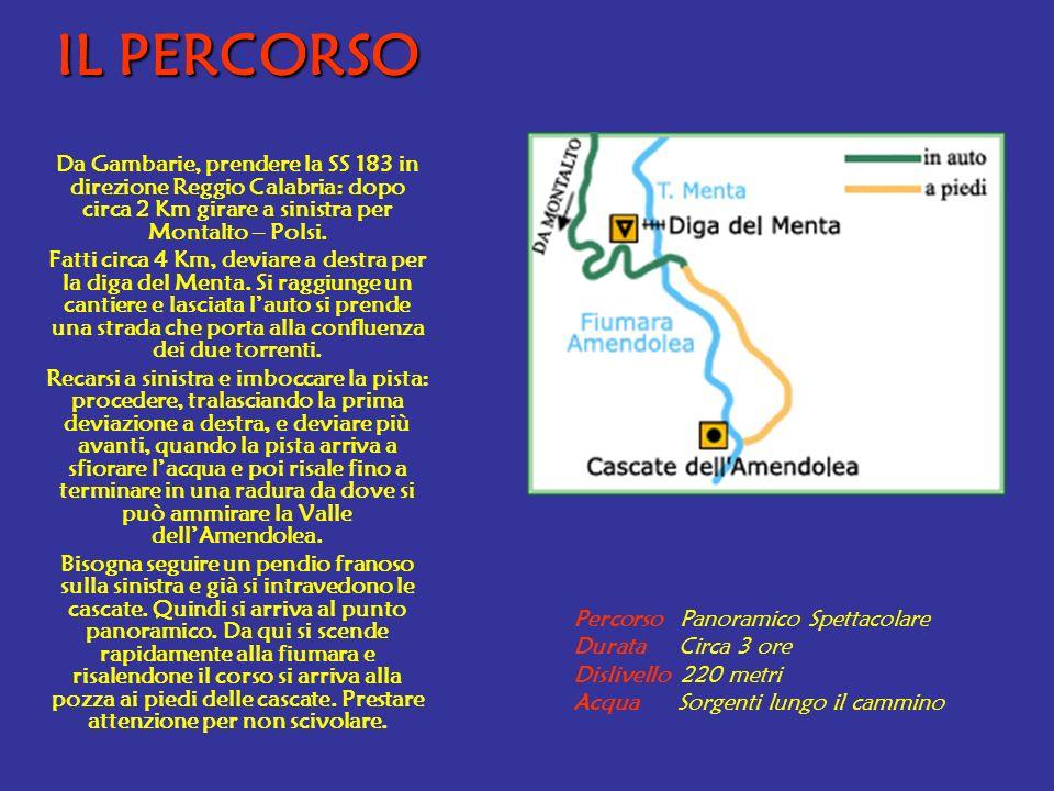 IL PERCORSO Da Gambarie, prendere la SS 183 in direzione Reggio Calabria: dopo circa 2 Km girare a sinistra per Montalto – Polsi.
