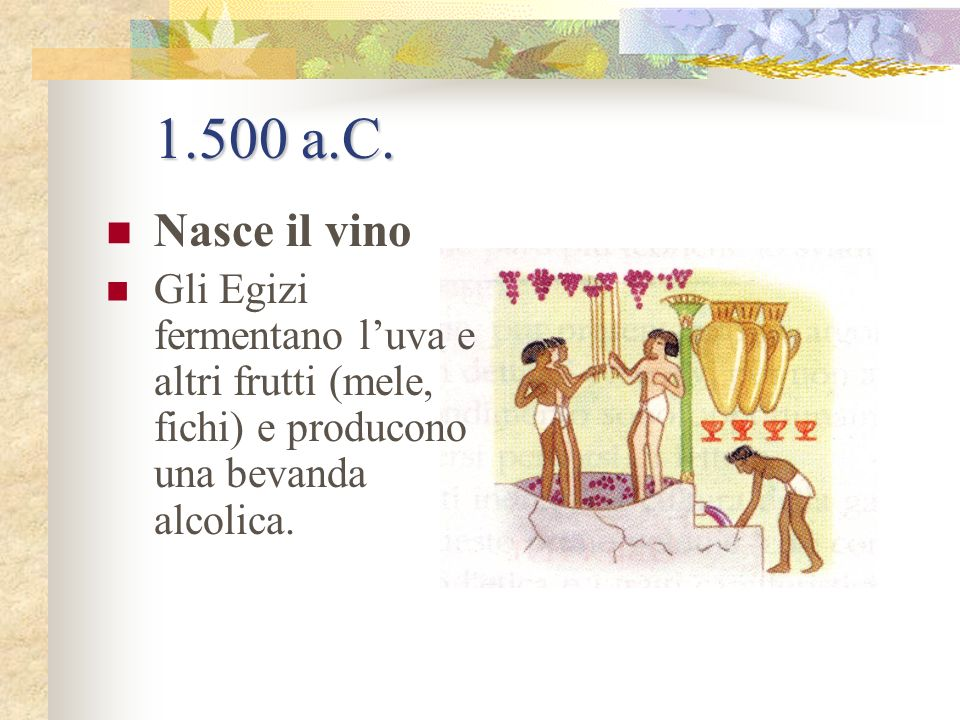 1.500 a.C. Nasce il vino.