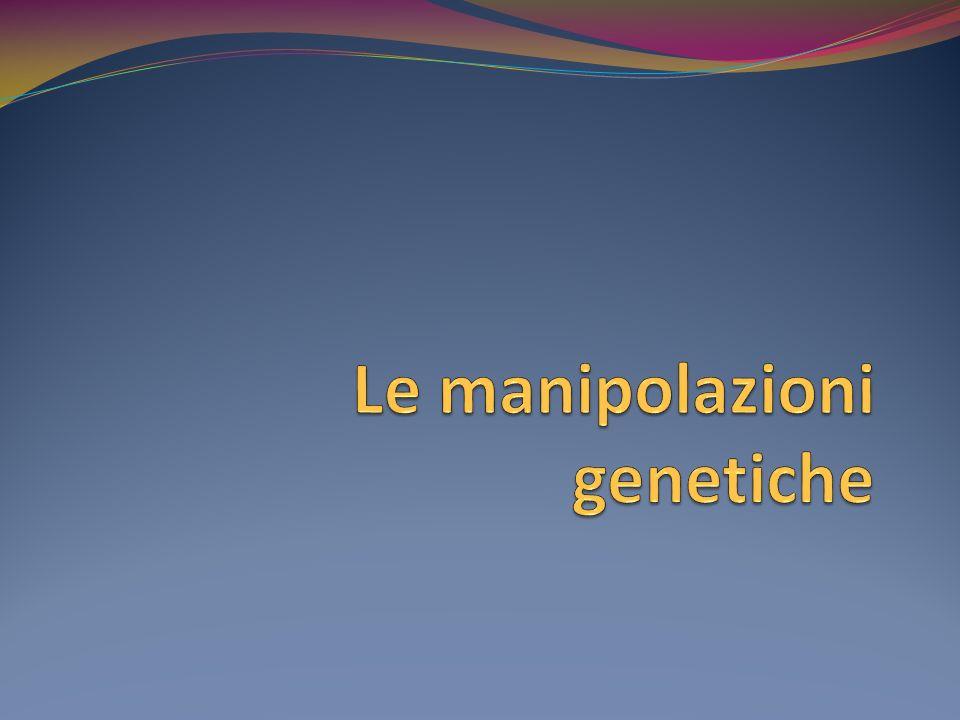 Le manipolazioni genetiche