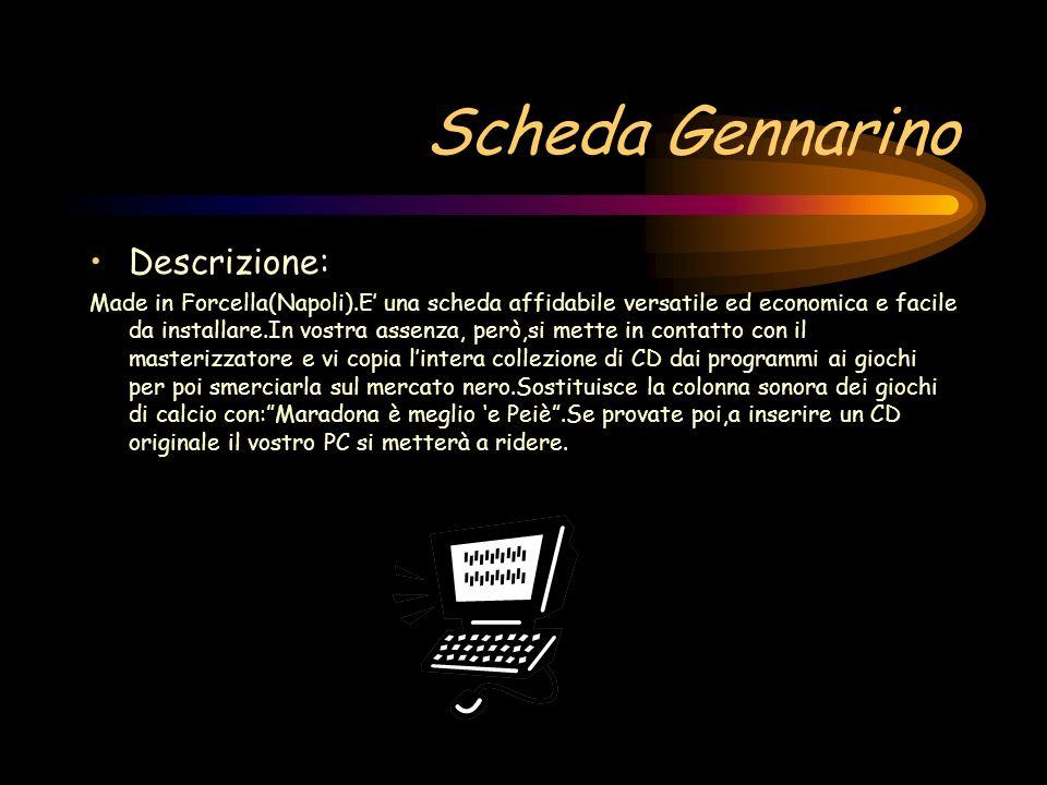 Scheda Gennarino Descrizione: