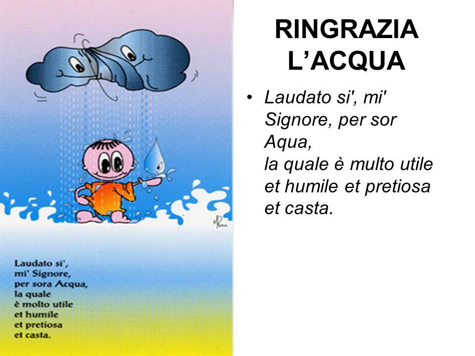 RINGRAZIA L'ACQUA Laudato si , mi Signore, per sor Aqua, la quale è multo utile et humile et pretiosa et casta.