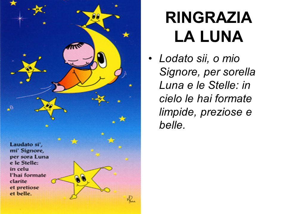 RINGRAZIA LA LUNA Lodato sii, o mio Signore, per sorella Luna e le Stelle: in cielo le hai formate limpide, preziose e belle.
