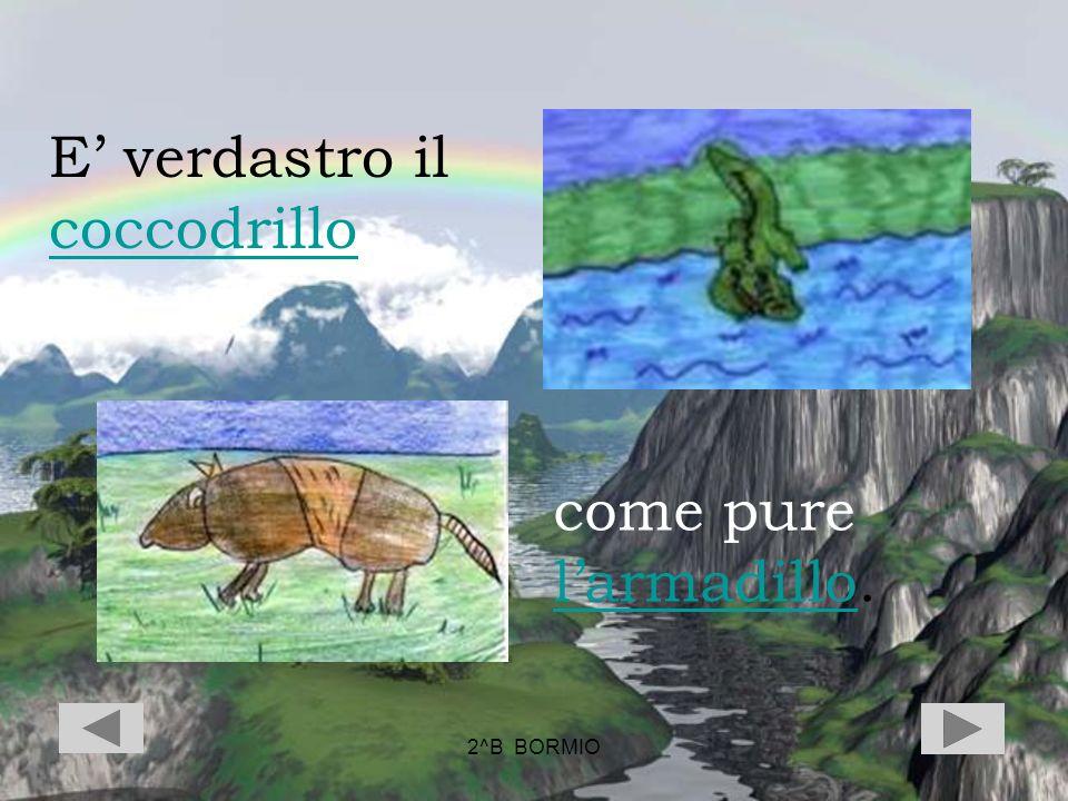 E' verdastro il coccodrillo