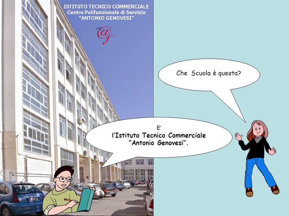 l'Istituto Tecnico Commerciale